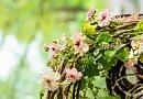 Frischer, lebendiger Blumenkreis | Wirbelnder Frühling