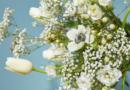 Strauß-Rezept für den Frühling | Übergangstulpen