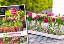 Fleur Kreativ Special Frühjahr 2020 | NEU