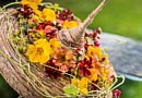 Online-Sommermagazin | Blumenarrangements