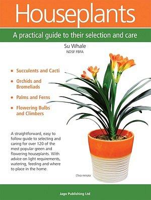 Houseplants Praktischer Leitfaden Zimmerpflanzen Neues Buch Büchertipps Pflegetipps Pflanzenliebhaber Magazin Fleur Kreativ Floristik