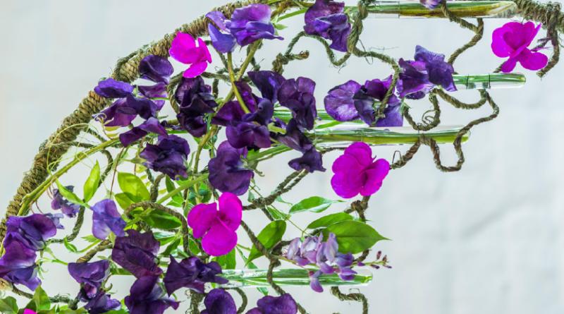 Papierenblumen im Kontrast zur Natur duftende plattebse Blauregen Blumenarrangements do it yourself diy design floral art blumenkunst blumenkünstler Stijn Cuvelier Liefhaber von blumen pflanzen bücher magazin Fleur Kreativ floristik florist Belgien Belgisch Sommer Kranz Schritt-für-Schritt