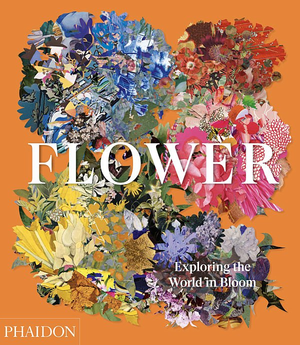 FLOWER. Exploring the World in Bloom neues Buch in der fleur kreativ buchhandlung florales design florale kunst floristen florale bücher inspiration tipps und tricks diy ideen winterbilder magazin