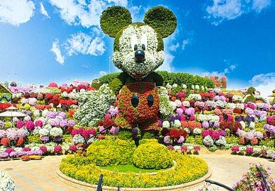 Dubai Miracle Garden bumenfestival blütenpracht kreationen inspiration florale kunst blumenkunst floral art floral designs fleur kreativ magazin zeitschrift