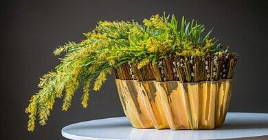 Der Frühling färbt gelb mit Mimosen. Ein Blumendesig von Geert Pattyn für Fleur Kreativ Frühling 2021.