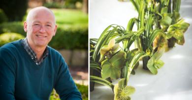 Fleur Kreativ-Florist im Rampenlicht: Geert Pattyn