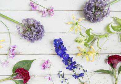 Fleur Kreaitv : Die 9 schönsten Sommerblumen für ganz viel Sonne im Strauß