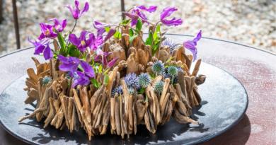 Fleur Kreativ :Trendiges Sommer-DIY mit Clematis